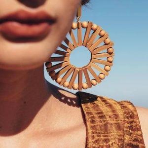 Anthro Windmill Earrings!
